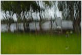 Rain in september