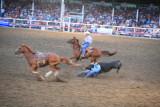 Steer Wrestling ( Hard Day's Work)