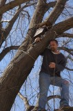 Ray putting the possum box in the tree