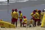 Surf lifesavers