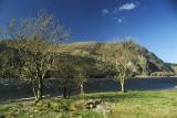 Llyn (Lake) Cwellyn, Snowdonia, on a gusty day