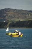 Llyn Peninsula, North Wales, UK.  Fishing launches at anchor