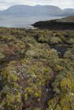 Sallachan Skerries, Loch Linnhe