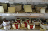 Cheeses on display at Poncelet