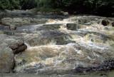 Rapids at Lata Berkoh on the Tahan
