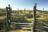 Ruined stockyard (cattleyard) at Dalhousie Springs at the western edge of the Desert