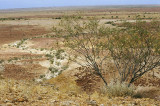 Channel Country, outside Birdsville