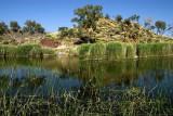 Finke Two Mile waterhole near Glen Helen
