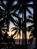 Taveuni Island, Fiji, 2005
