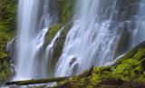 Oregon - Rhapsody in Green