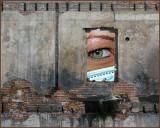 Mind's Eye Image Offerings
