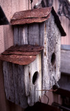 March 24th - Birdhouse
