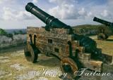 Gun at Fort Soledad