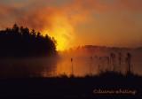 Adirondack Morning Arbutis Lake