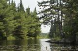 From Kayak on Openago Lake