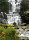 Chittenango Falls 2