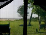 In Transit (Maasai Mara to The Serengeti) May 22, 2007