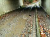 Sous le Ring 0 - Passage souterrain du Molenweg. - Enfin... un peu mieux.