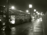 Buses At The War Memorial