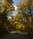 vermont_in_autumn