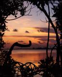 Prospect Sunset 8