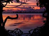 Prospect Sunset 1