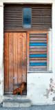 Cuban Door 1