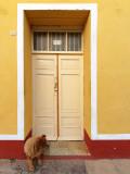 Cuban Door 2