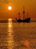 Jolly Roger 7