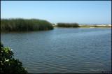 More Ormond Beach
