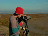 Birdwatching in the Ebro Delta, Bay of Fangar - Pajareo en el delta del Ebro - Observant ocells al Delta del Ebre