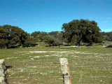 Parque Natural de Andújar - Sierra Morena - Jaen