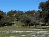 Nature Park Andujar - Parque Natural de Andujar (Sierra Morena)
