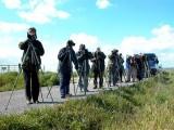 Non stop birdwatching in Extremadura - Pajareando en Extremadura - Observant ocells a Extremadura