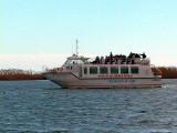 Boat trip in the Ebro Delta - Creuer al Delta