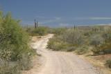 Baja Bash by Beemer February 2007