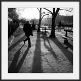 Paris le matin