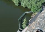 Fiskgaller - från taket