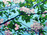 Spring Along the Alban Way panel 2