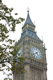 westminster11.jpg