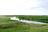 Downstream.jpg