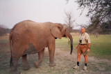 Joe and the elephant.JPG