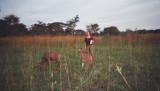 Kerry and the antelope calves.JPG