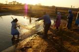 Mariachiedza near Chegutu, Zimbabwe, AFRICA