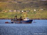 Olshana hard aground.