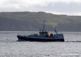 Gullberg VN 590