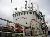 Havørnin FD 290
