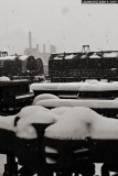 snowstorm in the stockyards