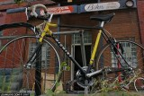 shaker cycle