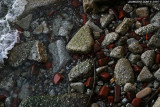 lake erie bricks